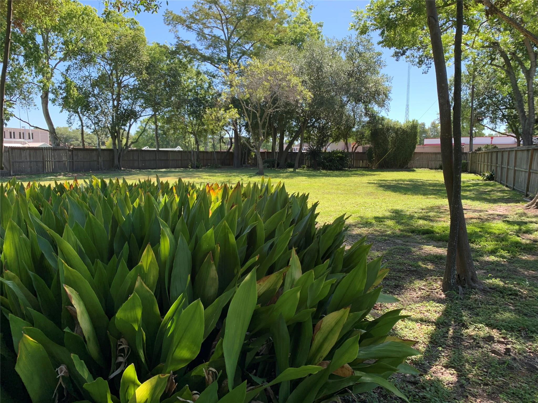 910 Sprucewood Street Property Photo - Hedwig Village, TX real estate listing
