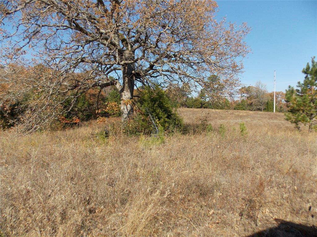 TBD County Road 3311 Property Photo - Jacksonville, TX real estate listing