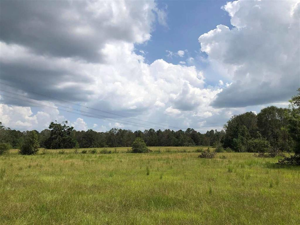 TBD County Rd 4048 Property Photo - Kirbyville, TX real estate listing