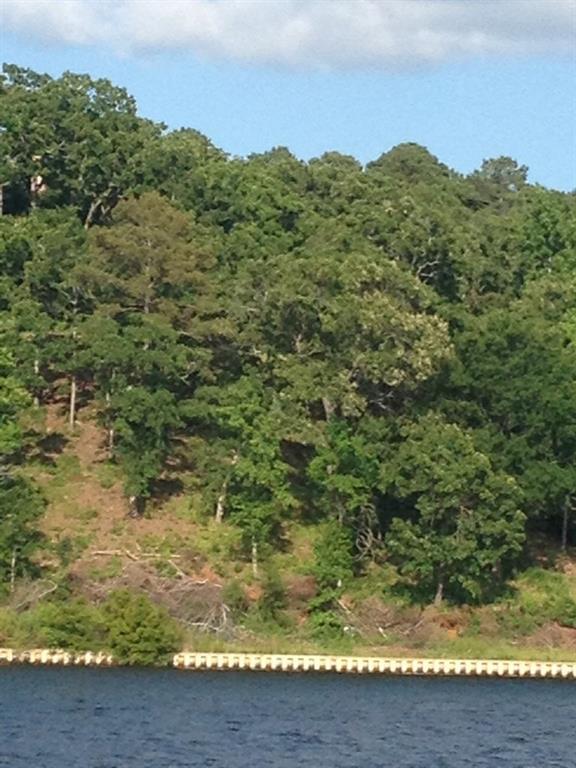 177 Lake Bluff Drive N Property Photo - Bullard, TX real estate listing