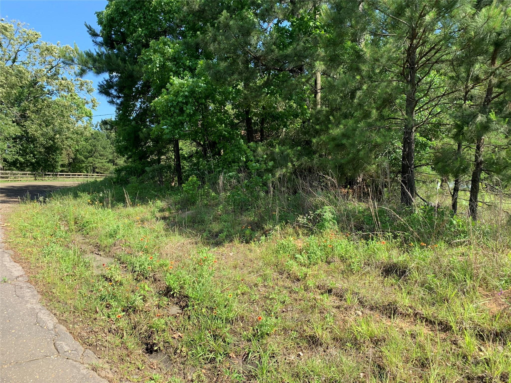 Tbd County Road 239 Property Photo