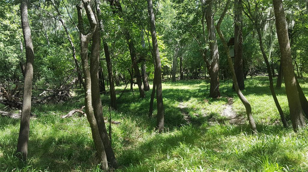 TBD County Road 138 Property Photo - Hallettsville, TX real estate listing