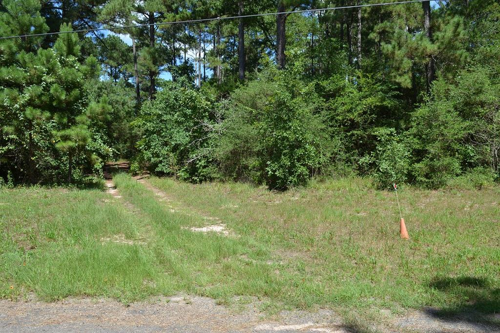 17239 Deer Run 194 Acres Property Photo - Navasota, TX real estate listing