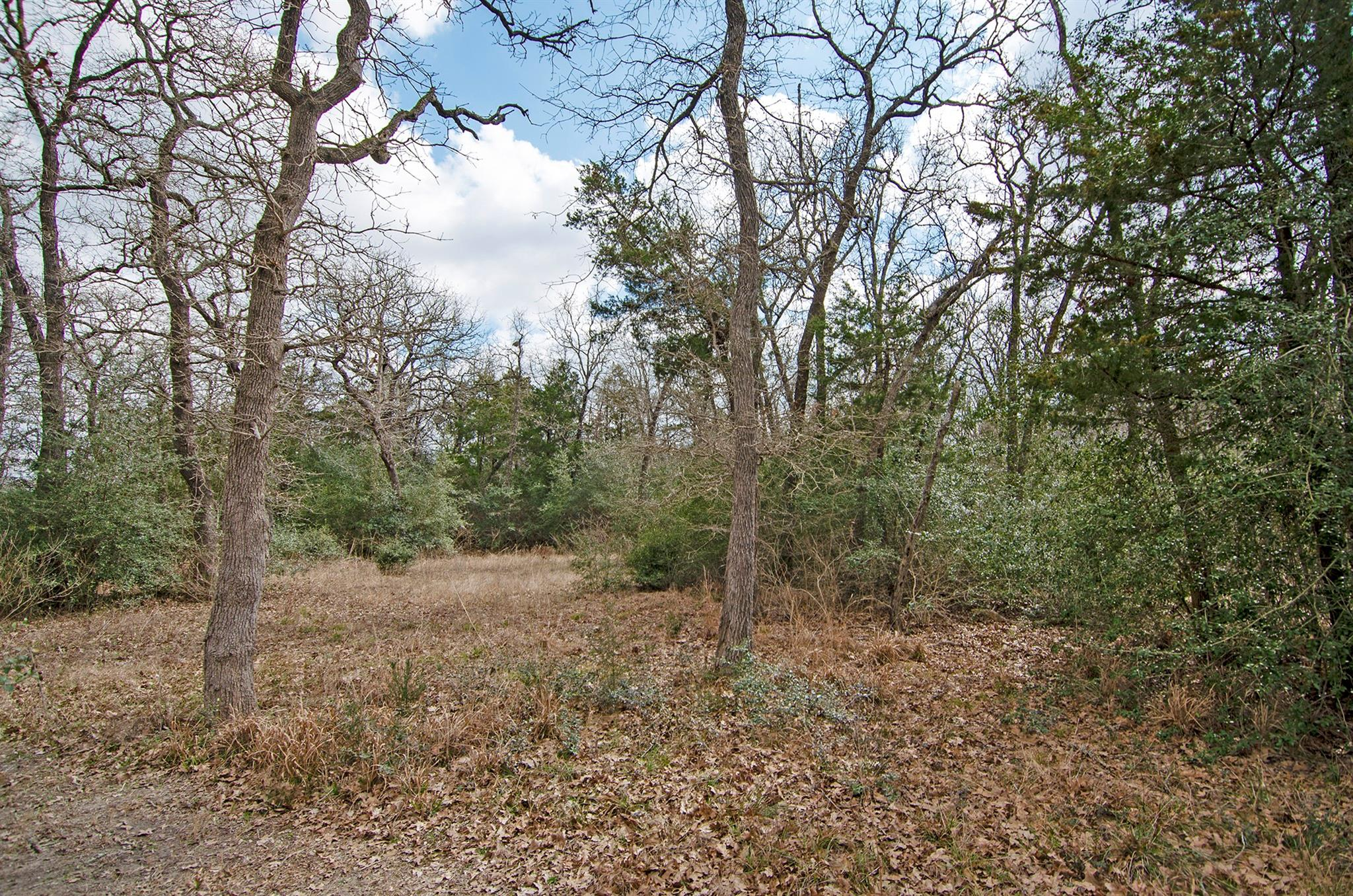 1955 Upshaw Road Property Photo - Carmine, TX real estate listing