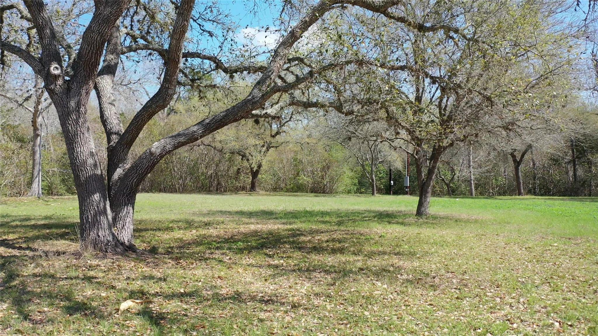 612 Fm 1457 Property Photo - Round Top, TX real estate listing