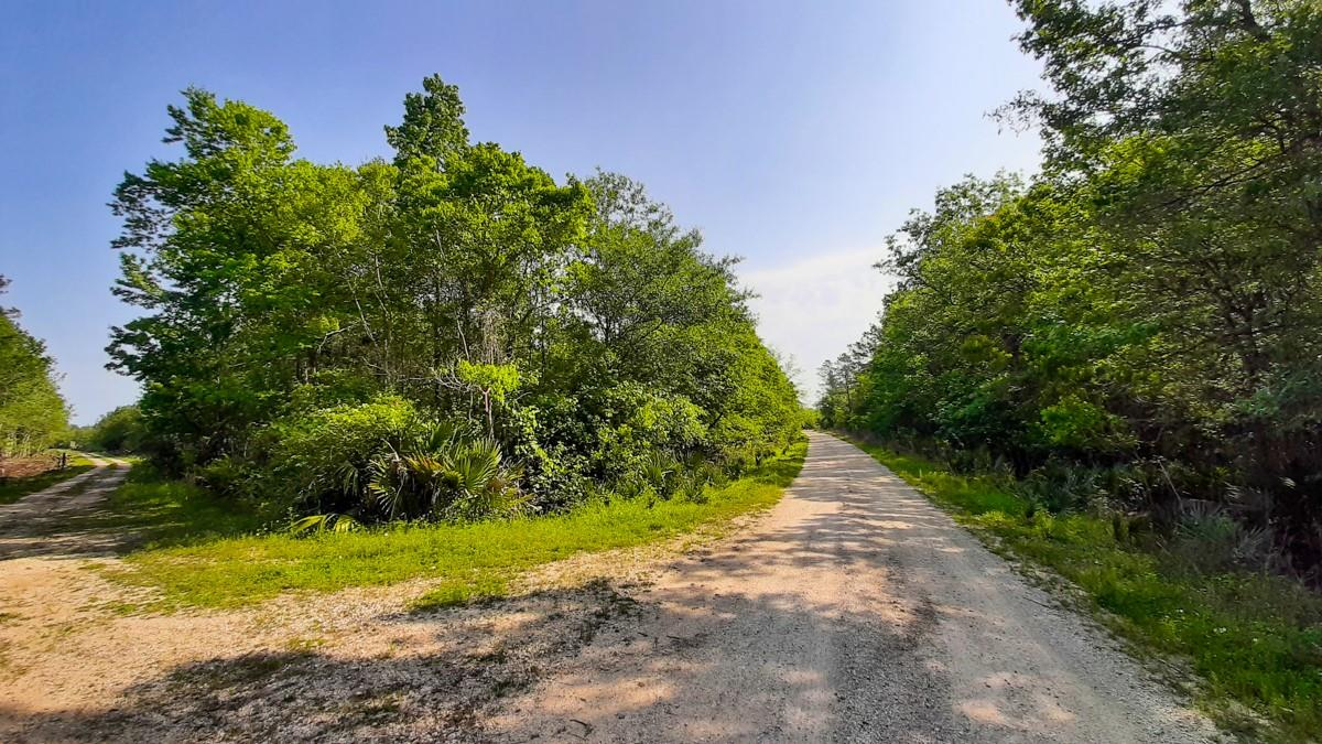 000 Easement off Gates Road Property Photo - Devers, TX real estate listing