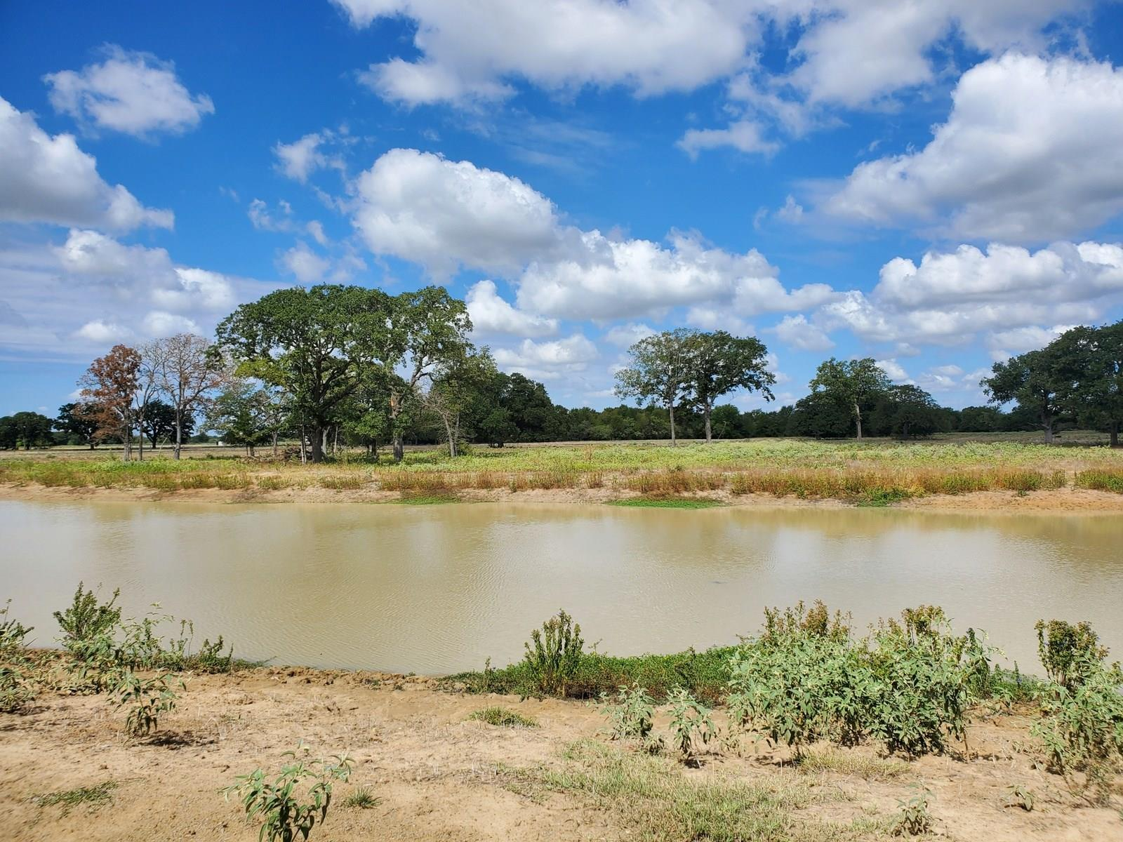 TBD Fm 979 Property Photo - Calvert, TX real estate listing