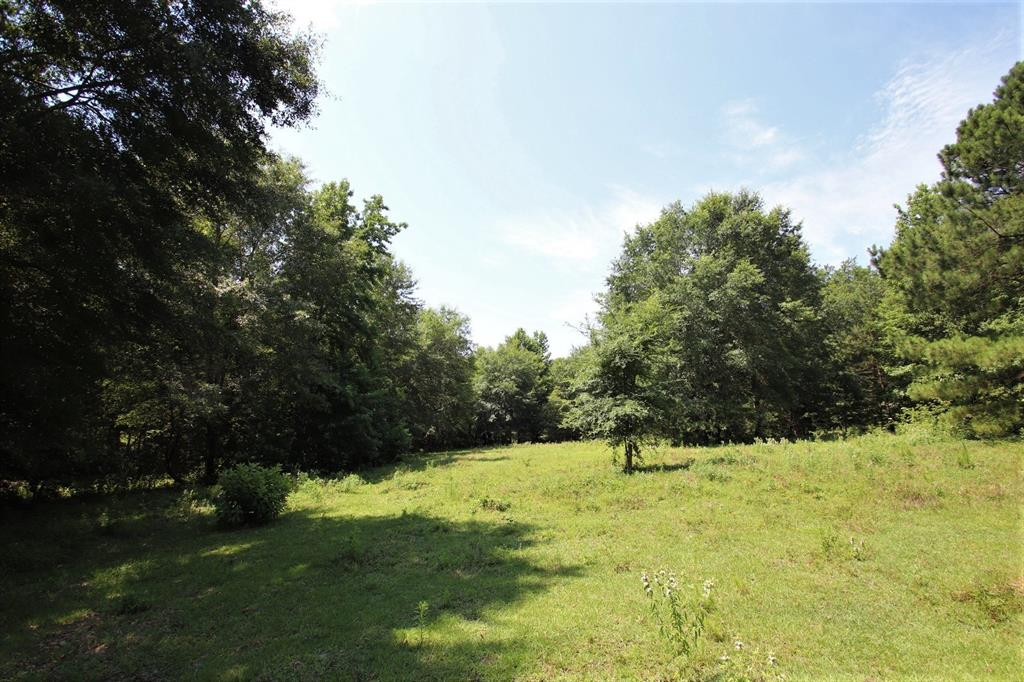 Tract 2 County Road 3170 Property Photo - Quitman, TX real estate listing