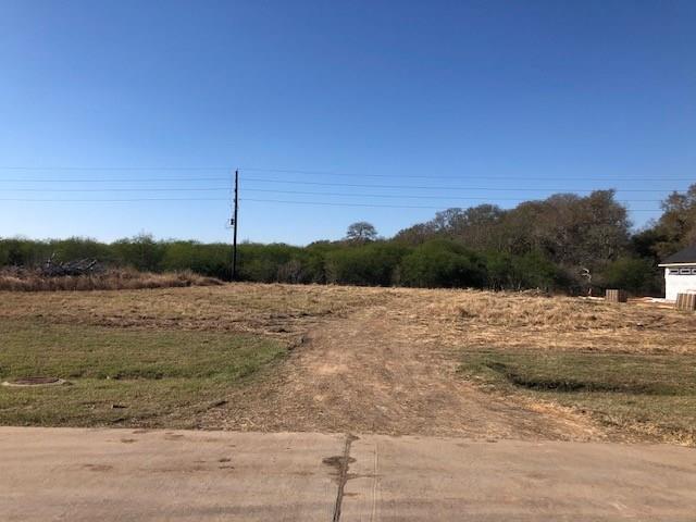 1022 Royal Lakes Manor Boulevard Property Photo - Richmond, TX real estate listing