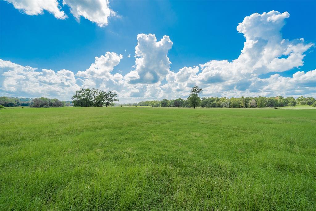 5500 Fm 1374 Road, Huntsville, TX 77340 - Huntsville, TX real estate listing