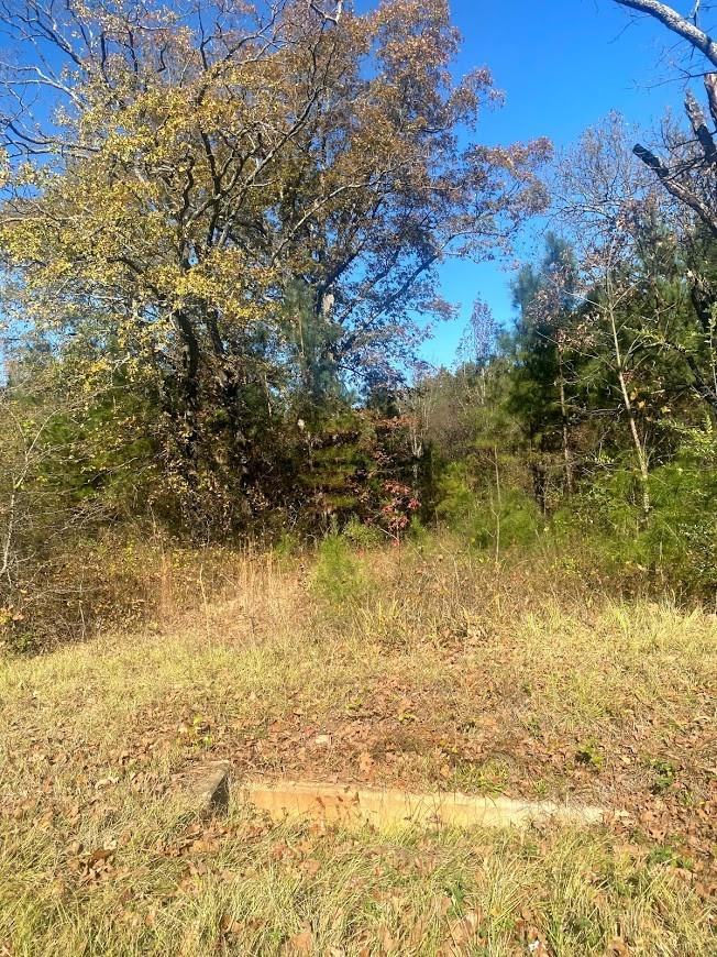 0 FM 449 LOT 441 Property Photo - Marshall, TX real estate listing