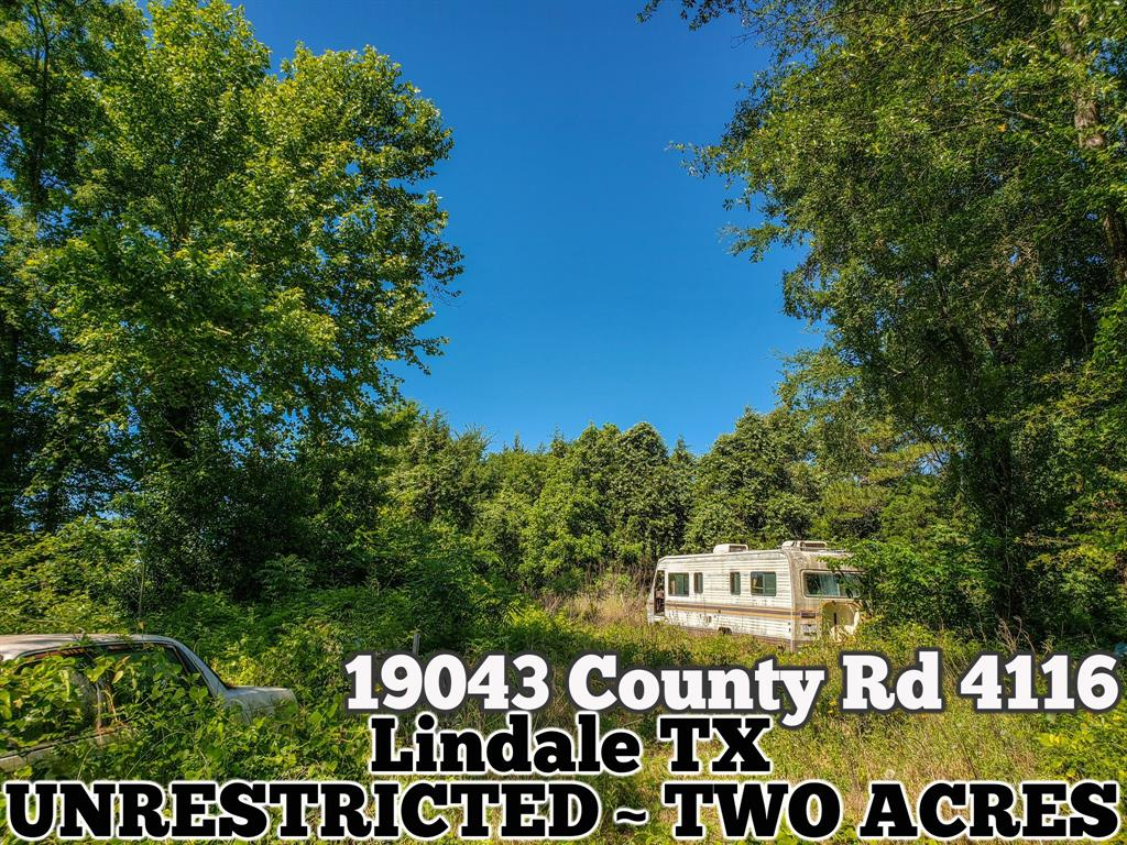 19043 County Road 4116 Property Photo - Lindale, TX real estate listing