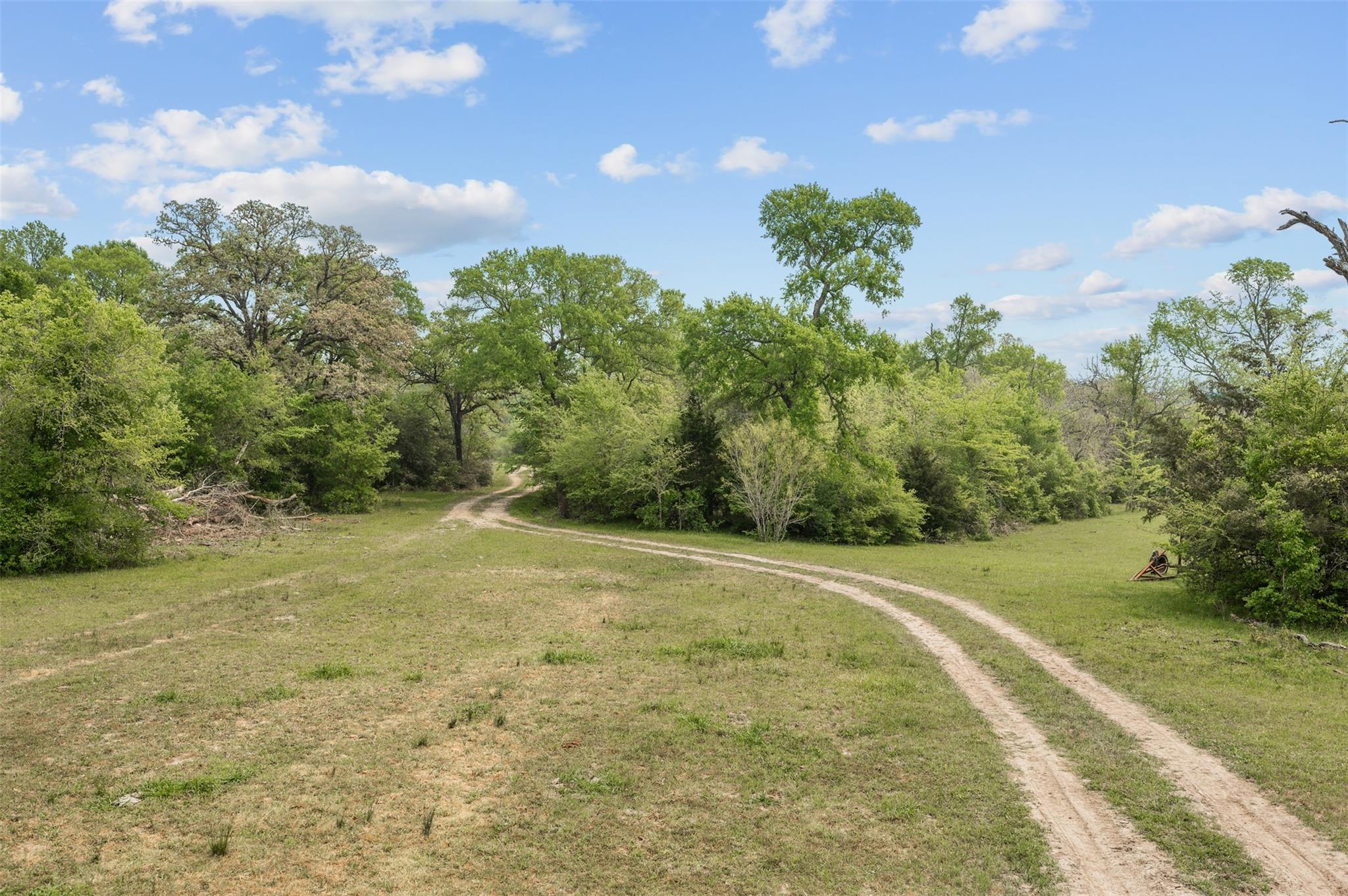 134.64 Acres County Rd 180 Property Photo - Anderson, TX real estate listing