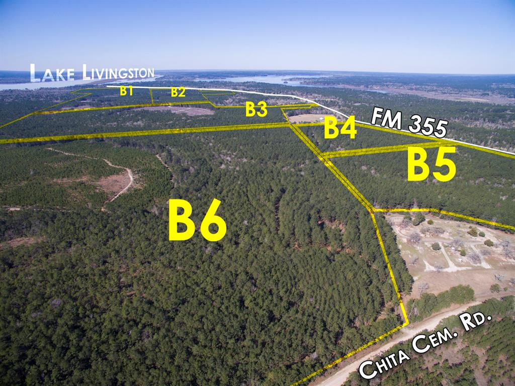 00 FM 355/Chita Cemetery Rd Property Photo - Trinity, TX real estate listing