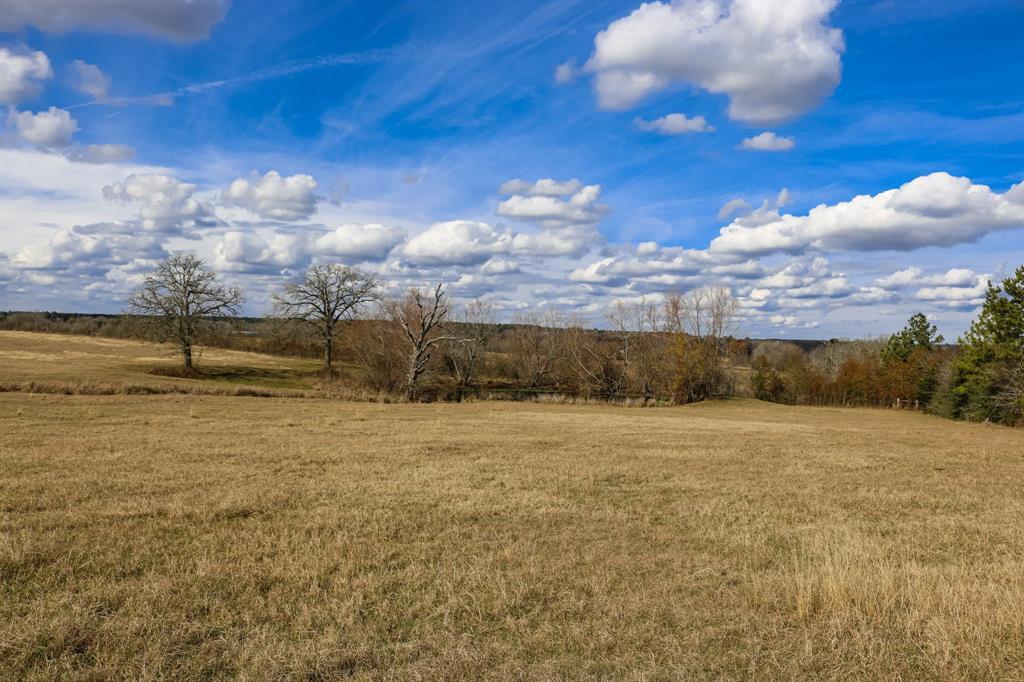 10+/- acres FM 1486, Richards, TX 77873 - Richards, TX real estate listing