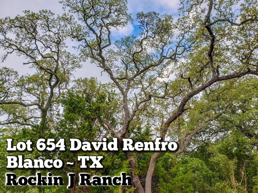 Lot 654 David Renfro Property Photo - Blanco, TX real estate listing