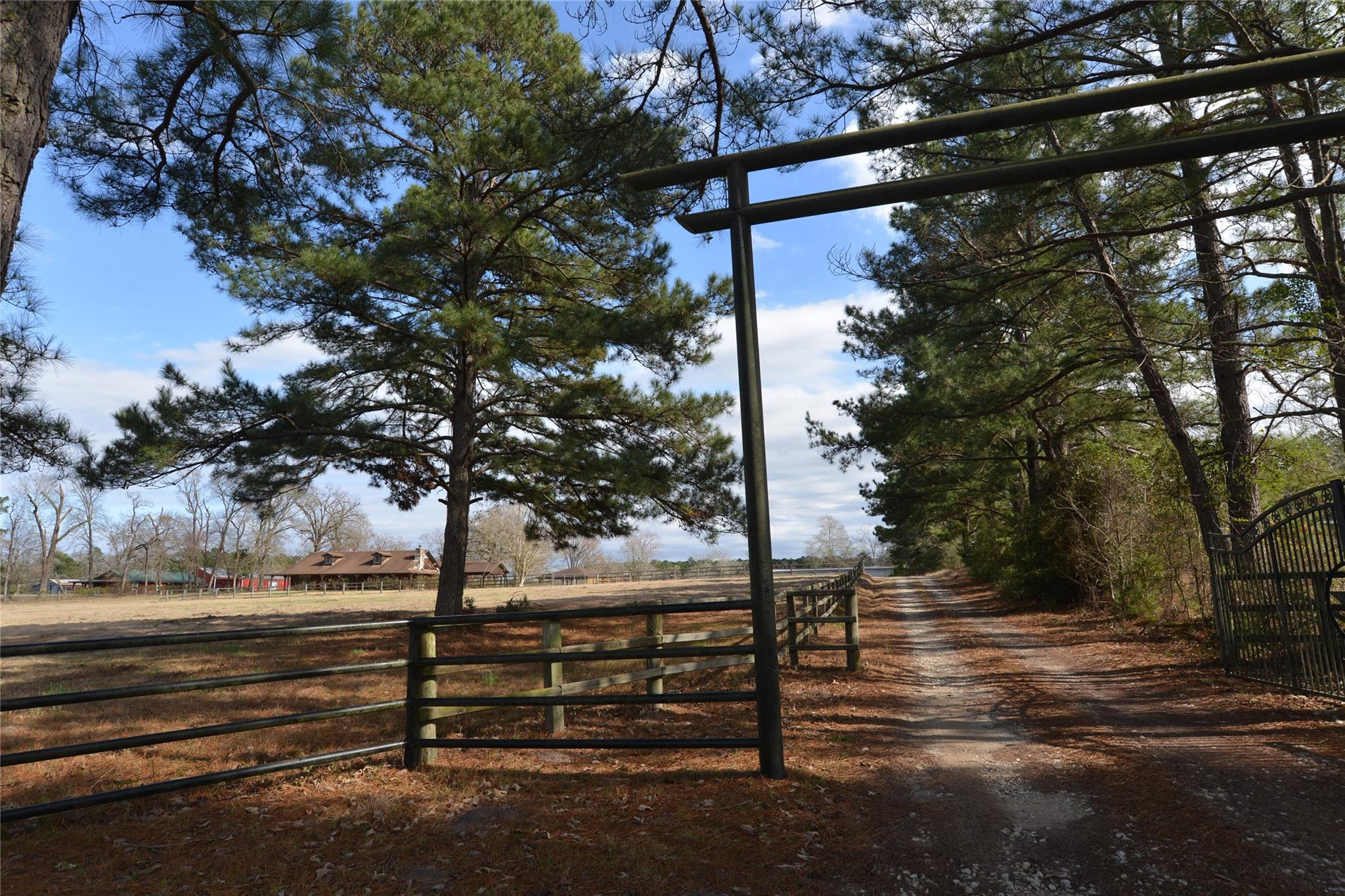 564 Carl Evans Road Property Photo - Groveton, TX real estate listing