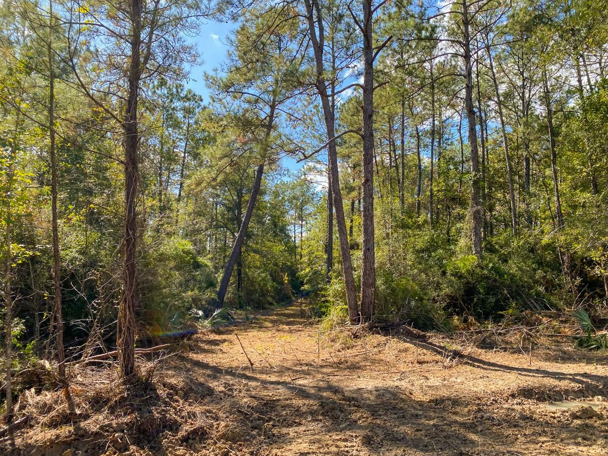 0 N Gates Rd Property Photo - Devers, TX real estate listing