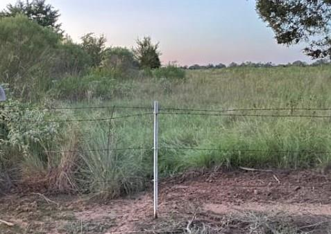 462 An County Road Property Photo - Palestine, TX real estate listing