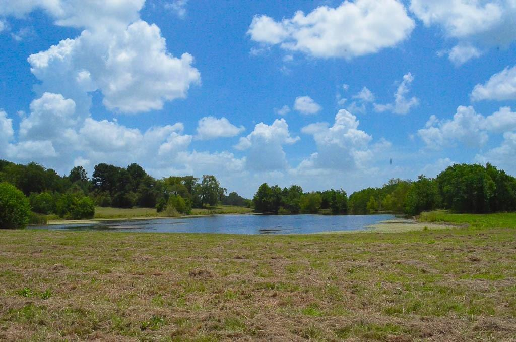 2927 County Road 1720/FM 2022 Property Photo - Grapeland, TX real estate listing