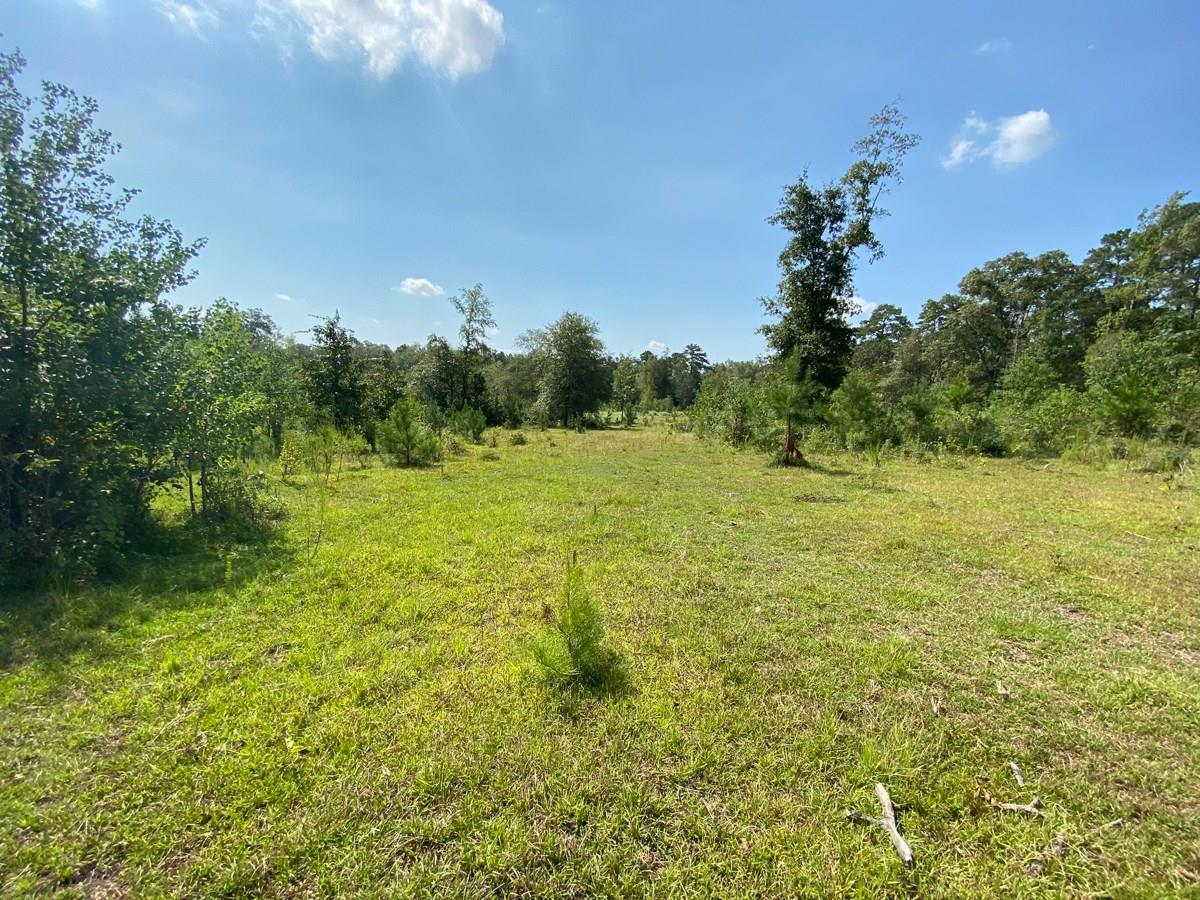 0 Mill Creek Rd Property Photo - Huntington, TX real estate listing