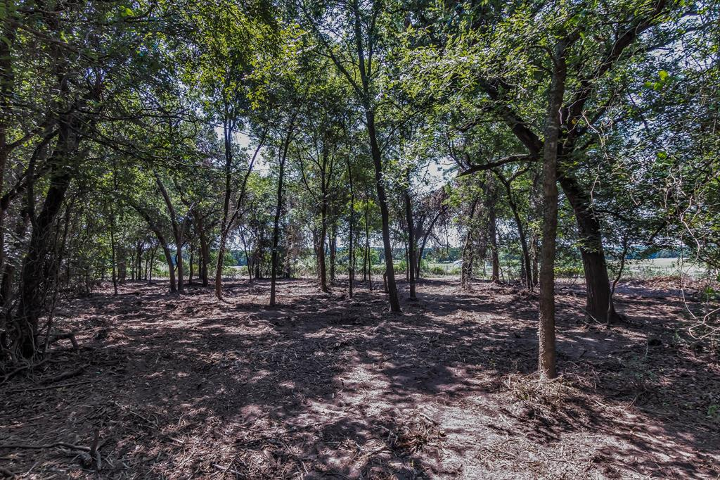 606 606 A W FM 979, Franklin, TX 77856 - Franklin, TX real estate listing