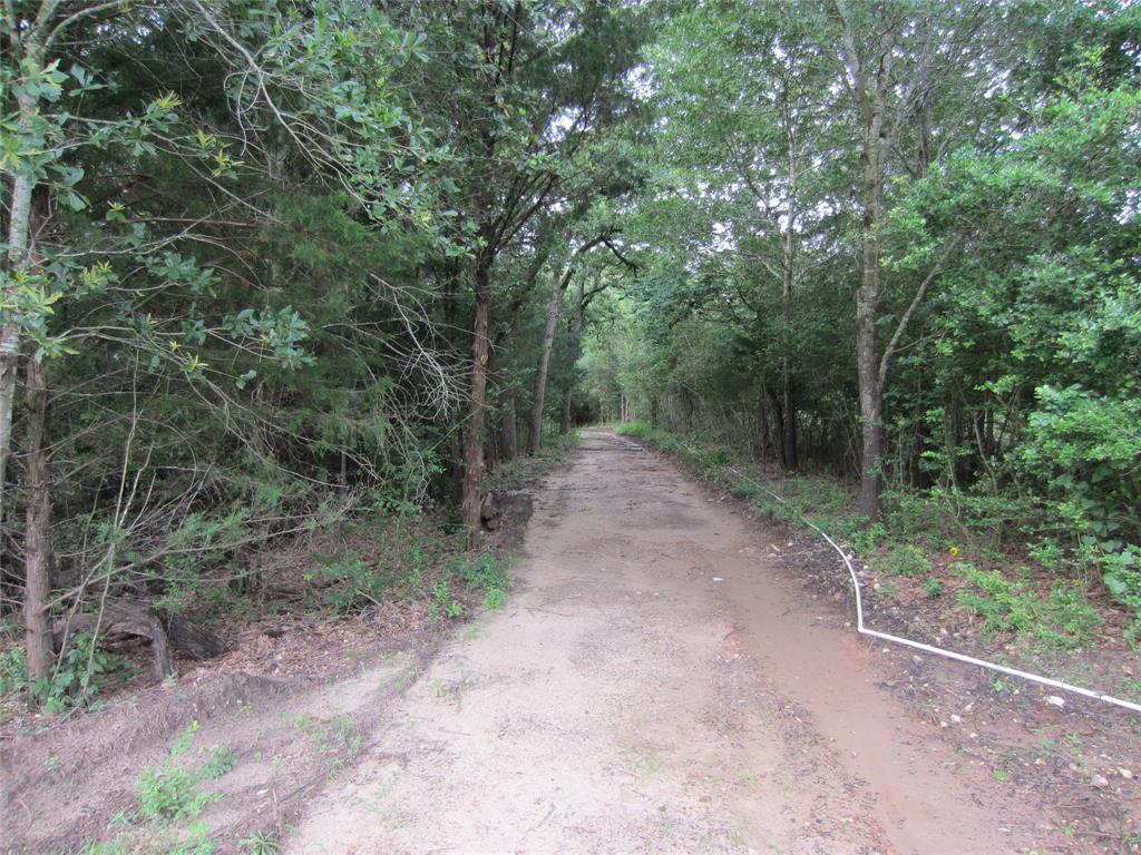 233 LCR 777 Property Photo - Groesbeck, TX real estate listing