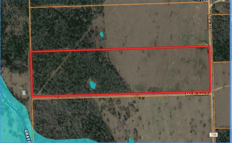 299 Nink, Smithville, TX 78957 - Smithville, TX real estate listing