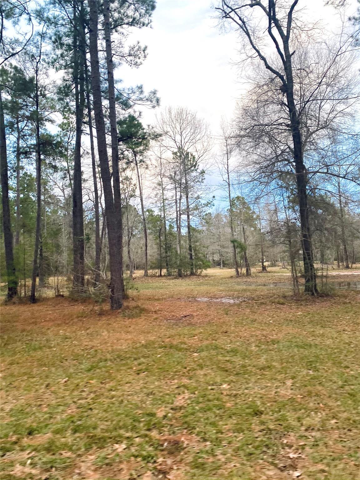000 Magnolia Drive Property Photo