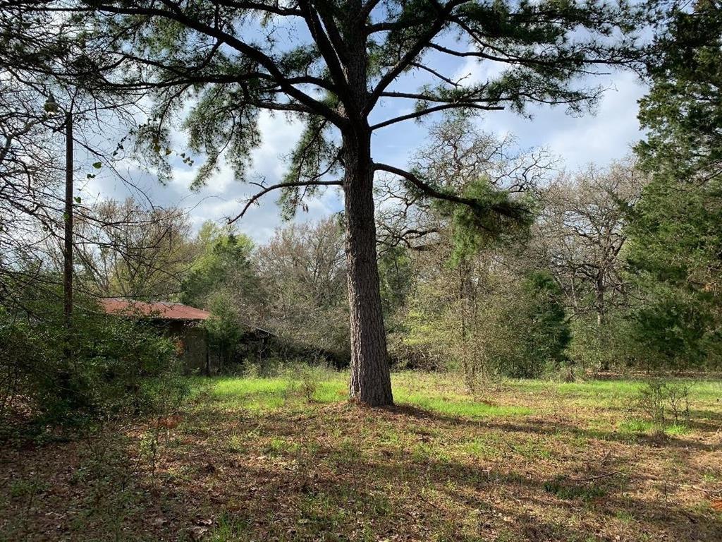 162 LCR 721, Kosse, TX 76653 - Kosse, TX real estate listing