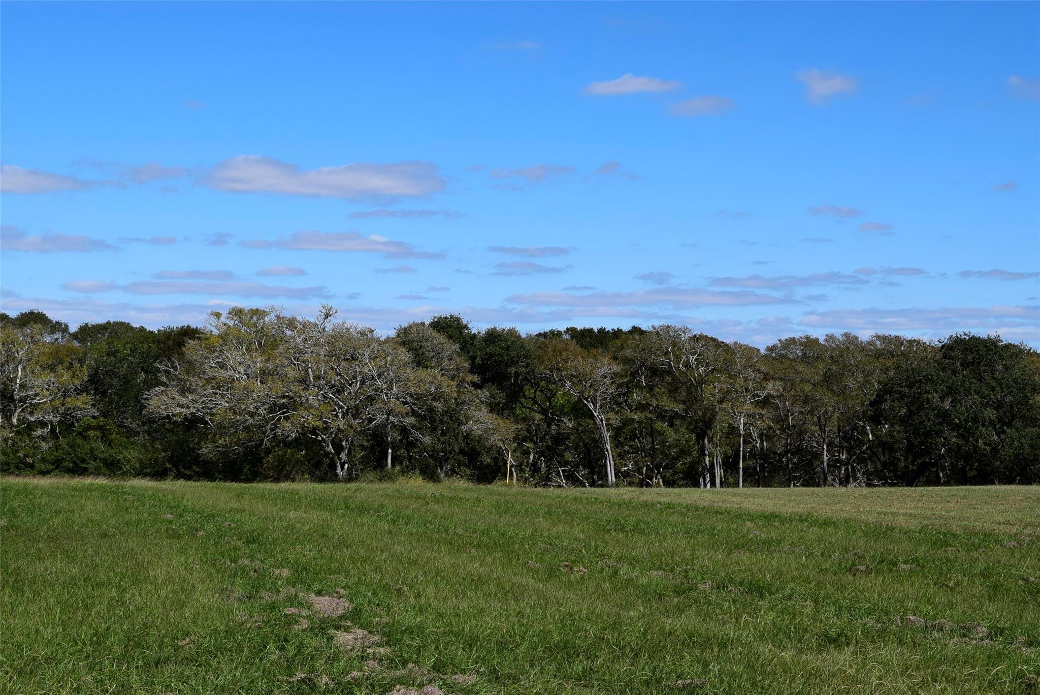 57 River Tree Drive Drive Property Photo