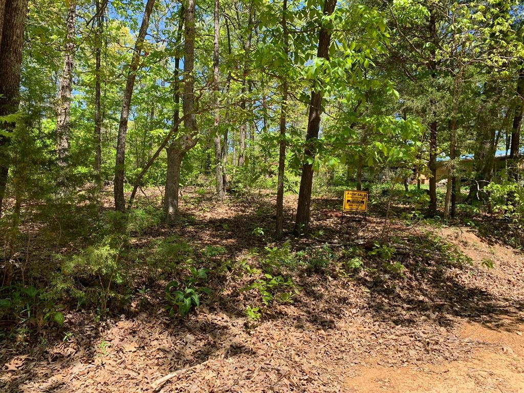 0 Pheasant Drive Property Photo - Other, AR real estate listing