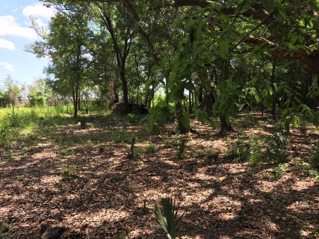 Tbd Bayou Drive County Road 848 Property Photo