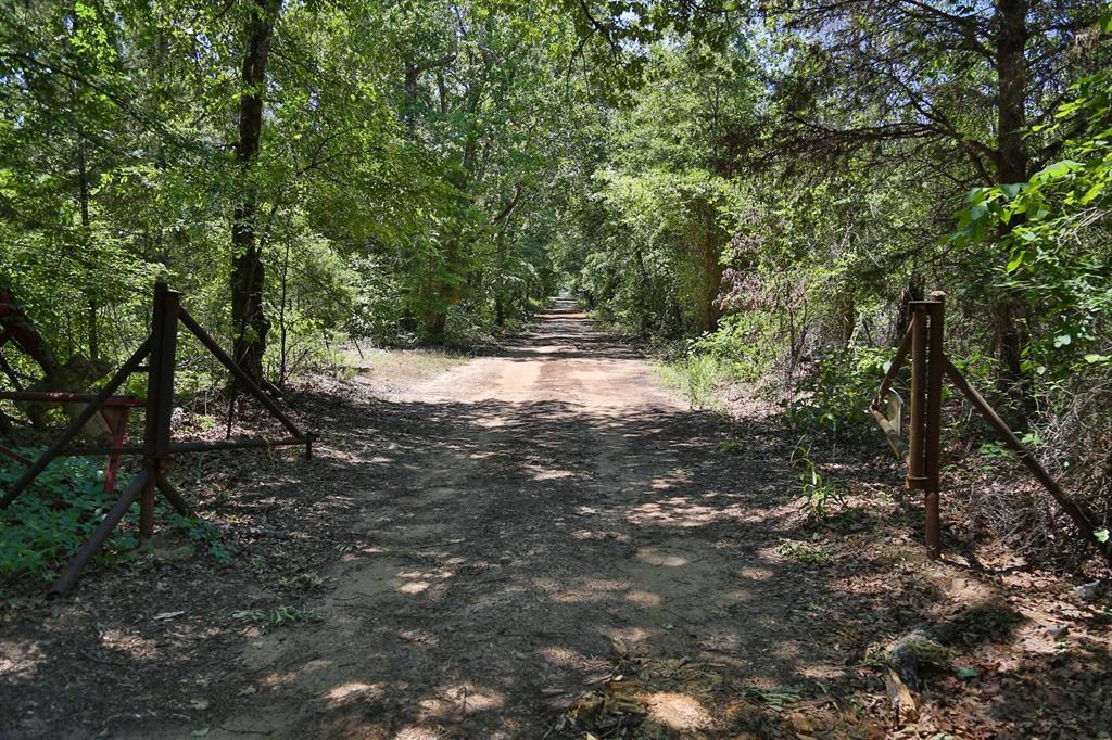 000 Off Azalea Rd Property Photo - Gilmer, TX real estate listing