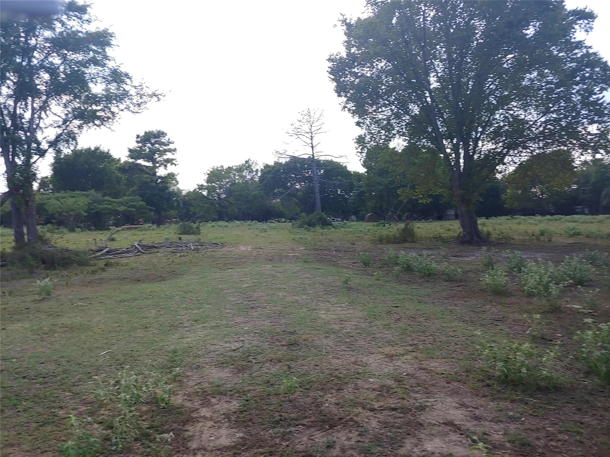 7111 N State Highway 6 Property Photo - Calvert, TX real estate listing