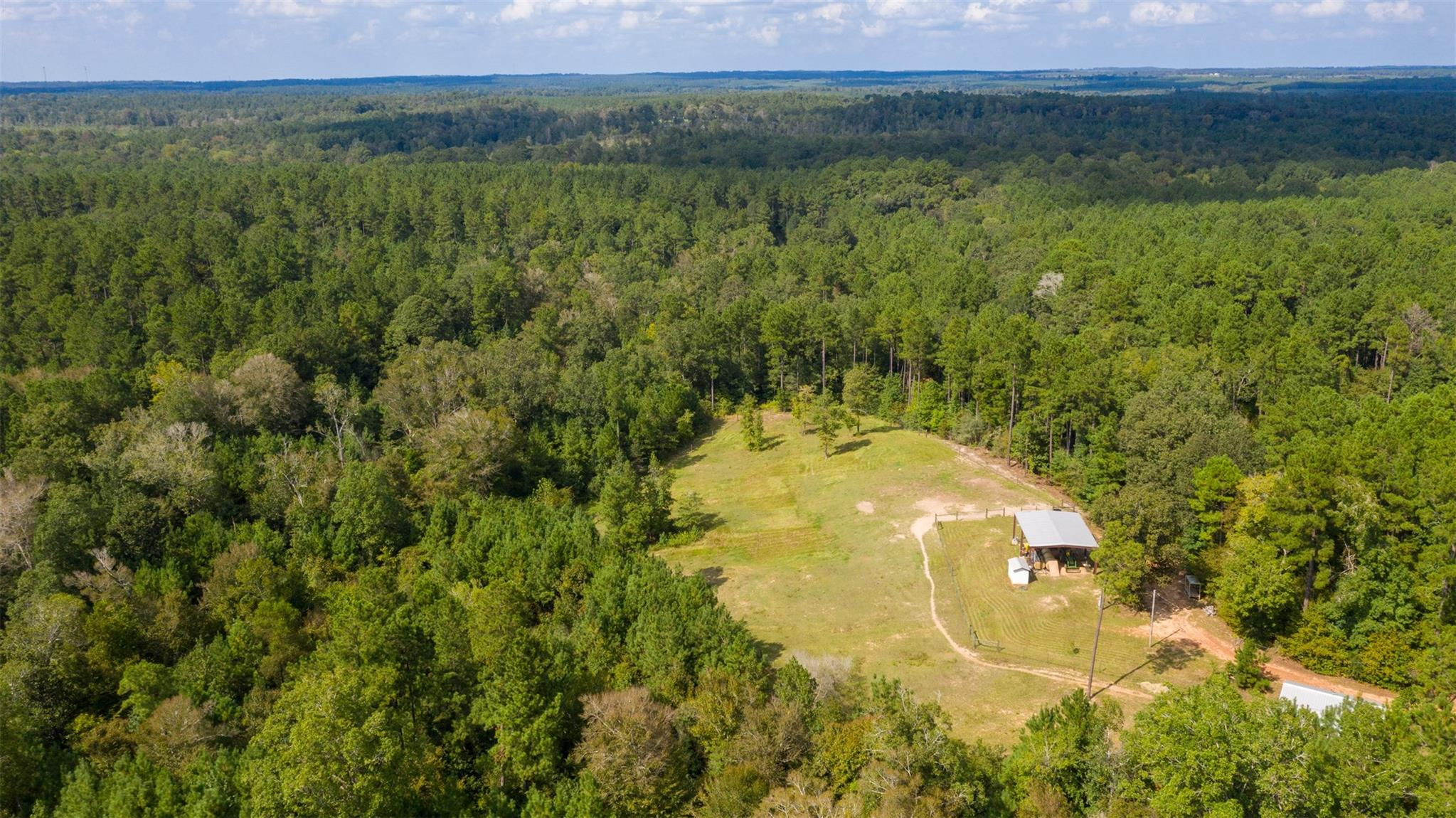 tbd Farm to Market Road 3065 Property Photo - Colmesneil, TX real estate listing