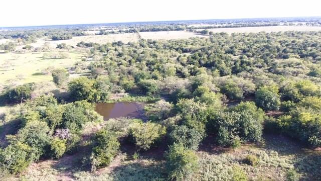 TBD FCR 976 Property Photo - Mexia, TX real estate listing