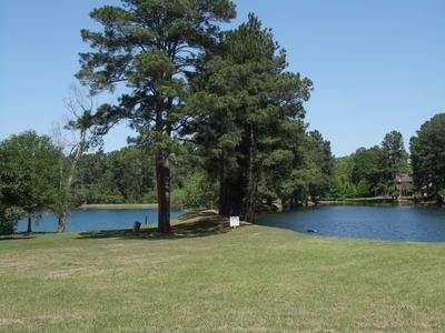 000 Corpus Drive Property Photo - Magnolia, TX real estate listing