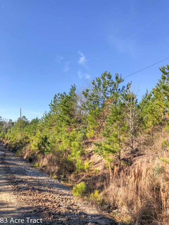 000 FM 2912 Property Photo - Groveton, TX real estate listing