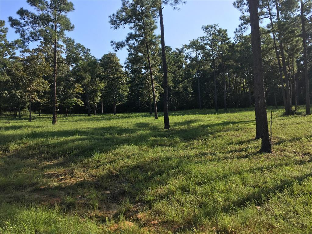 00 County Road 222C, Brookeland, TX 75931 - Brookeland, TX real estate listing