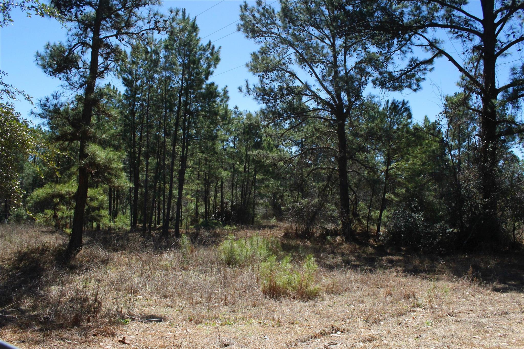 0028 Cr 232a Property Photo