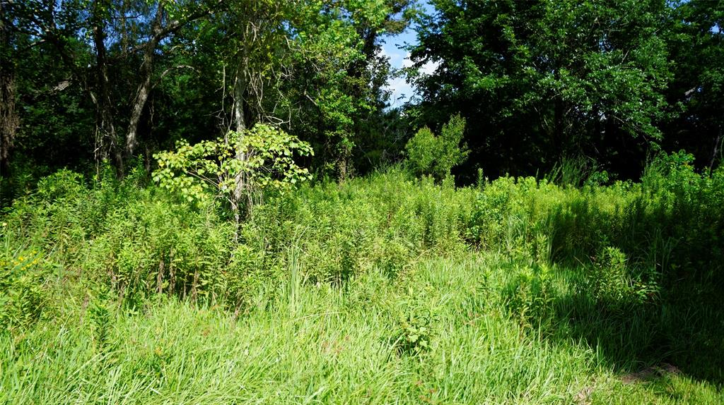 0 County Road 4872 Property Photo - Dayton, TX real estate listing