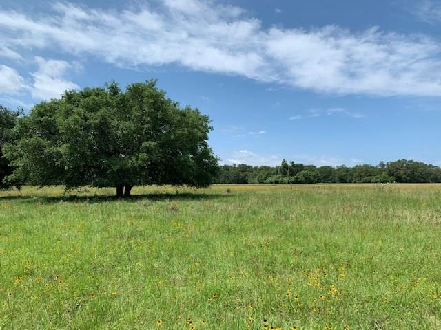 0 Private Road 4044 Property Photo - Somerville, TX real estate listing