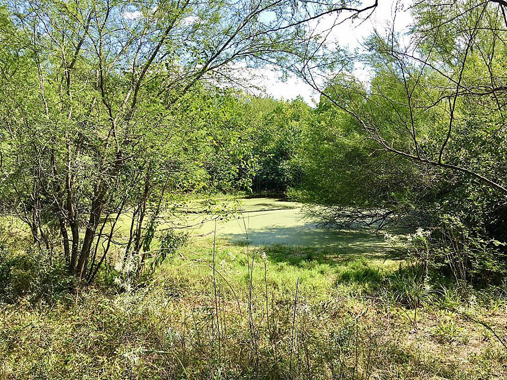 000 Main Street, Chappell Hill, TX 77426 - Chappell Hill, TX real estate listing