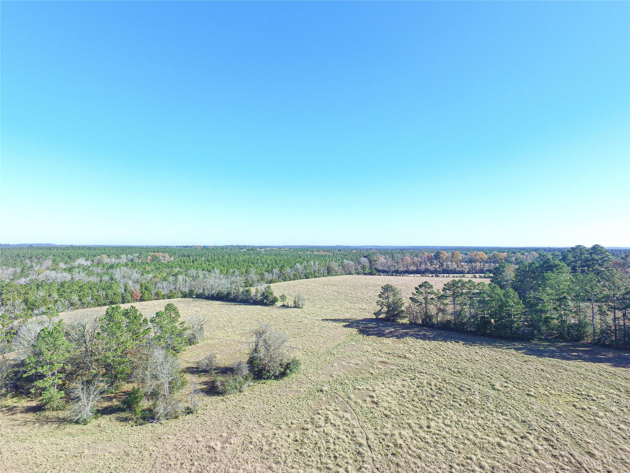 865 E Caney Loop Property Photo - Chester, TX real estate listing