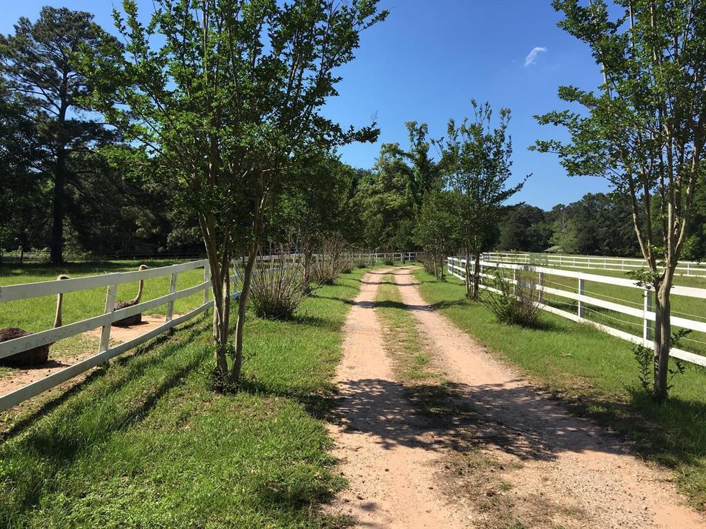 73 Sandel Road, Huntsville, TX 77340 - Huntsville, TX real estate listing