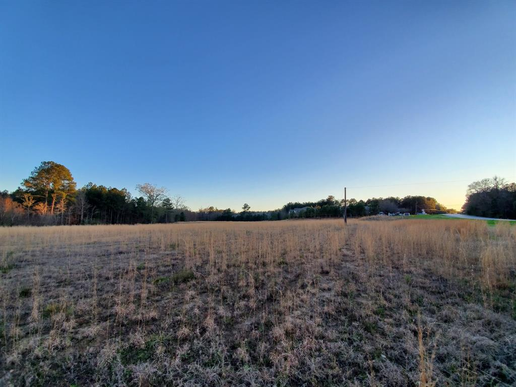 0 Hwy 69 S East Side Property Photo - Woodville, TX real estate listing