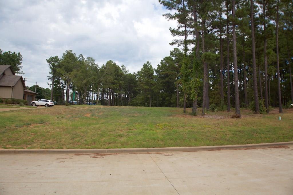 22233 Mallards Cove Ct Property Photo - Bullard, TX real estate listing