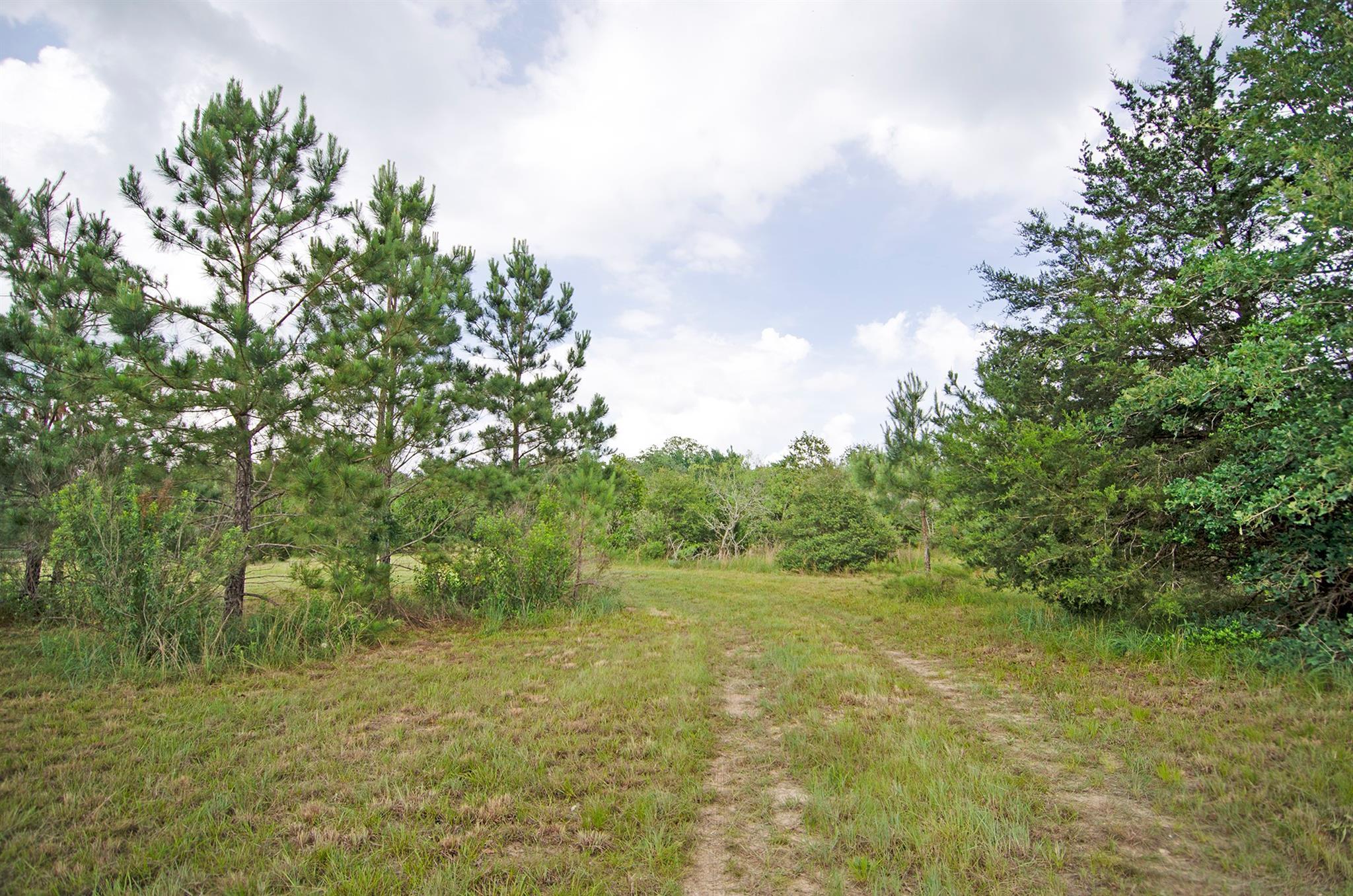 1252 Hickory Place Property Photo