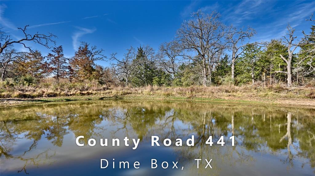 1250 County Road 441, Dime Box, TX 77853 - Dime Box, TX real estate listing